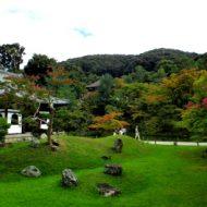 秋雨時期の高台寺