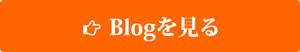 blog_btn