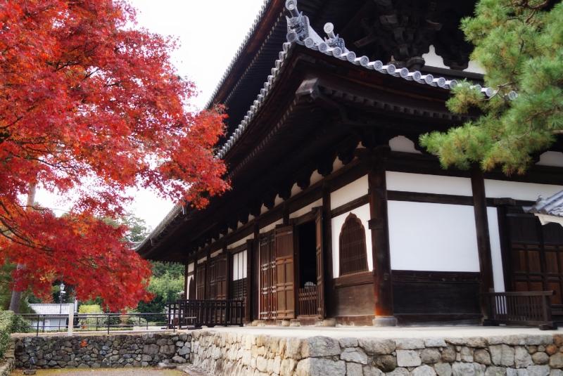 相国寺の高揚
