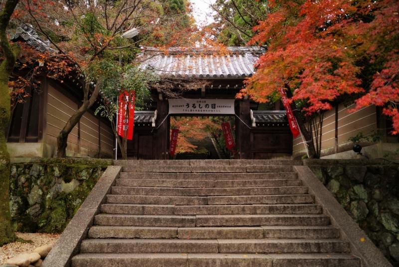 嵐山の穴場スポット法輪寺