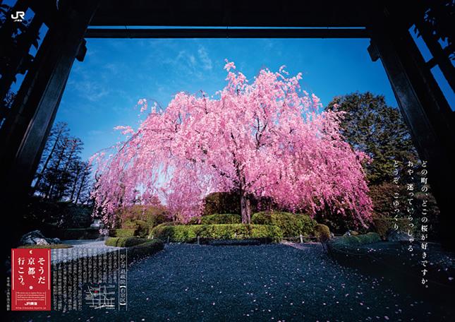 2013_spring