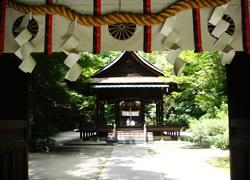 nashinoki-jinjya02.jpg